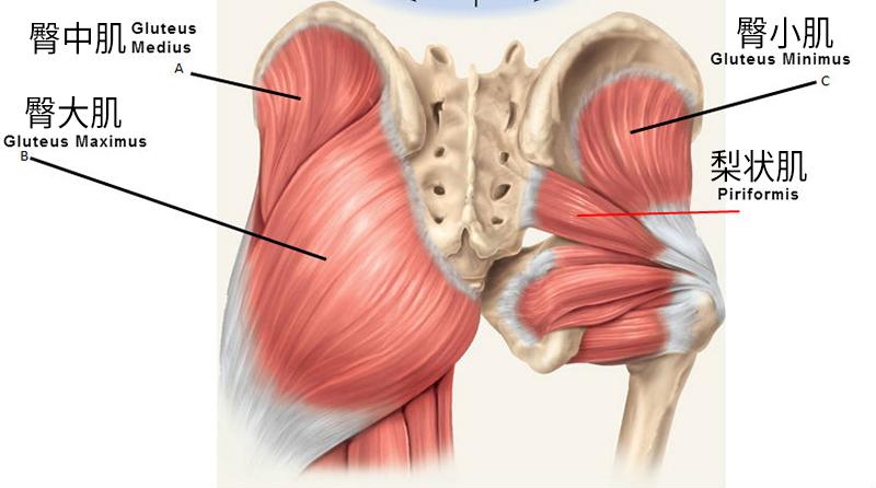 髂胫束综合征,膝盖外侧疼痛