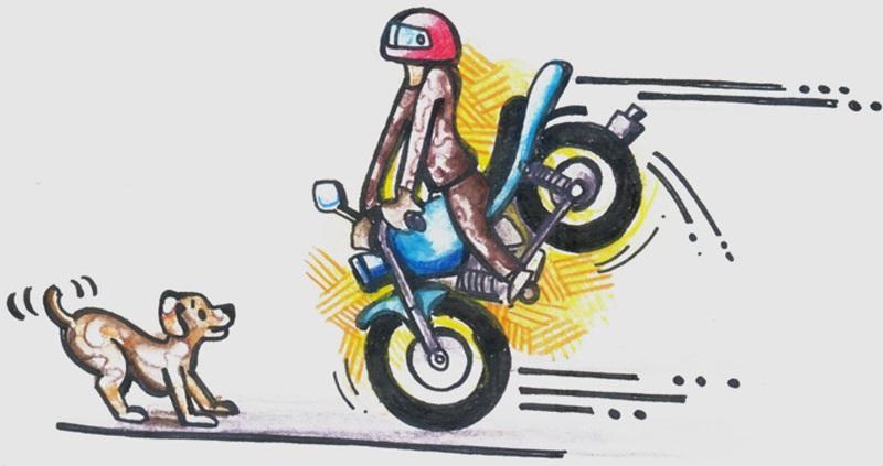 美骑骑行入门-骑行的基础技巧