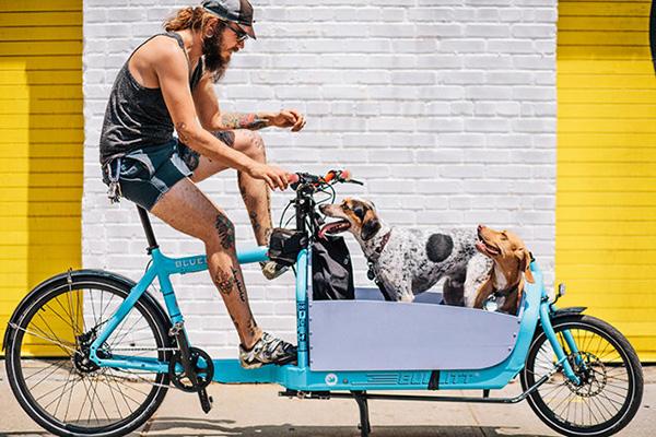 """""""不务正业""""的汽车企业造了哪些电动自行车? - 美骑网"""