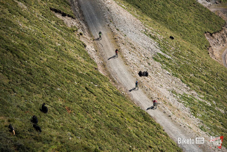 越骑越野,山地车穿越,越野车穿越,穿越贡嘎-7612.jpg