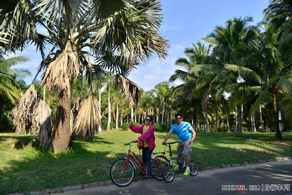 骑行椰子大观园