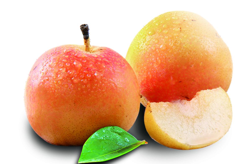 苹果梨.jpg