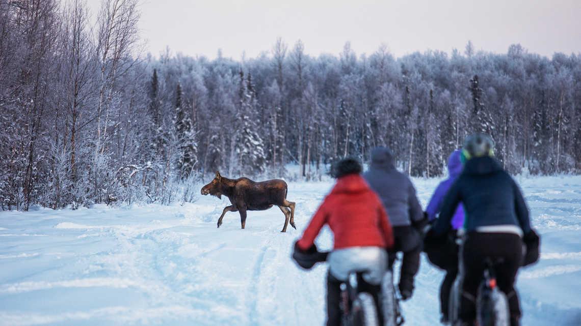 女子团体胖胎骑行挑战冰川
