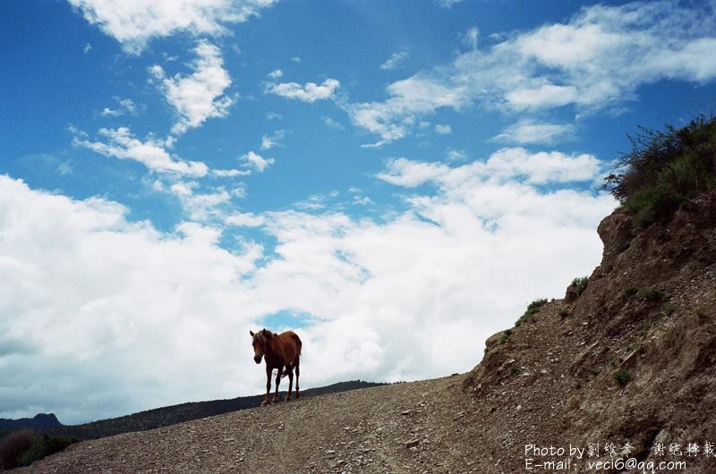 女孩自行车进藏日记(拾贰)-西藏骑行第十二天(革布村