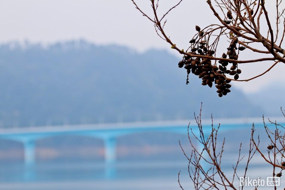 中国自行车联赛,中国自行车联赛第三站,千岛湖
