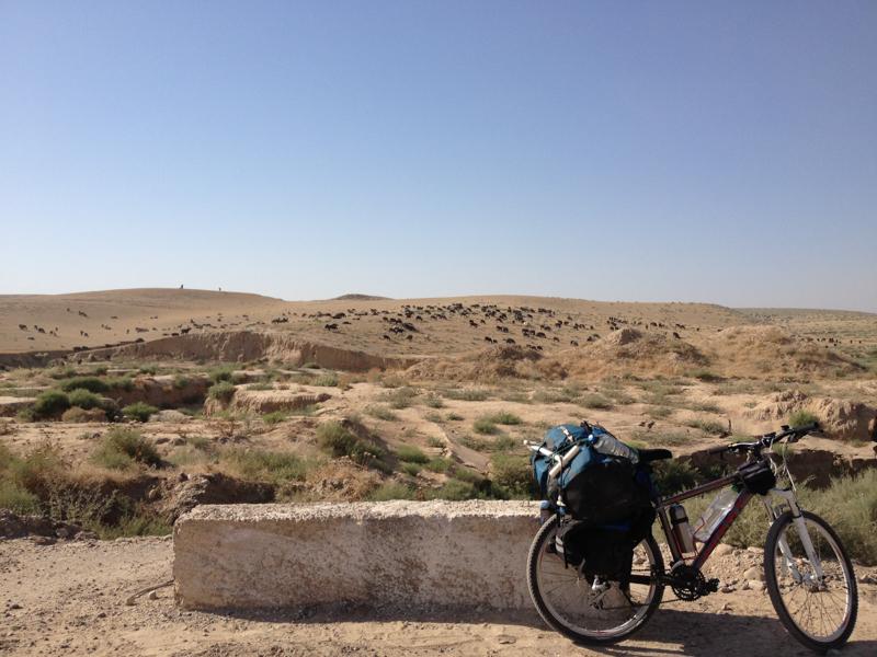 骑车去埃及