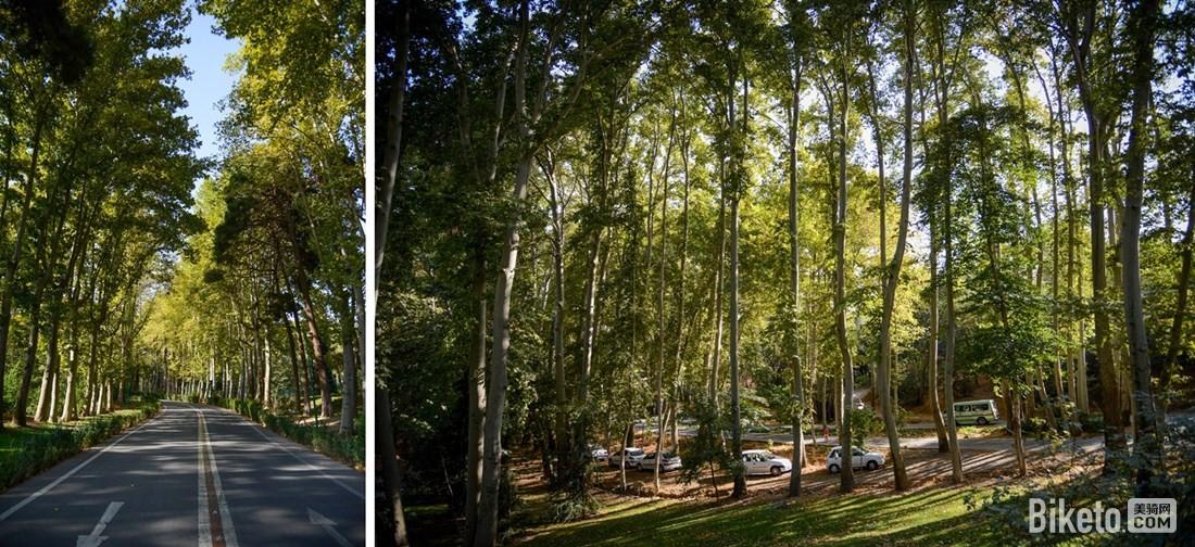 绿树成荫的皇宫建筑群