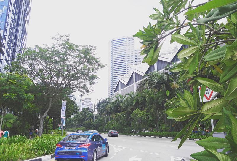 新加坡骑行攻略