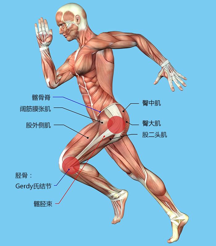 骑行健康知识 膝盖疼痛问题与处理方法