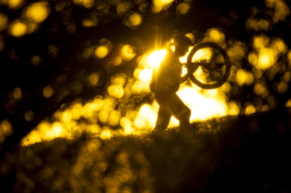 阳光下扛自行车