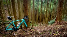 用5天骑遍京都  strava赛段探路骑行